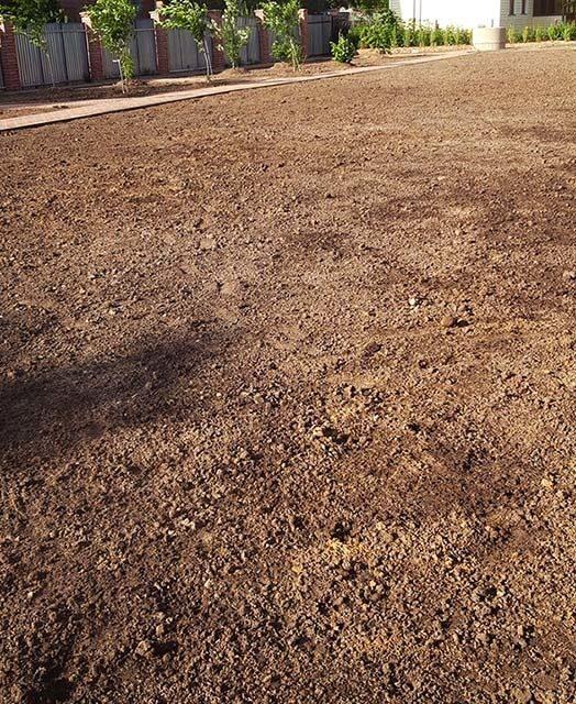 укладка газона в Москве подготовка основания для посевного газона
